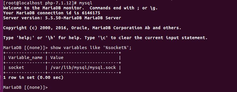 Find MySQL socket