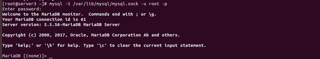 login to mysql using socket