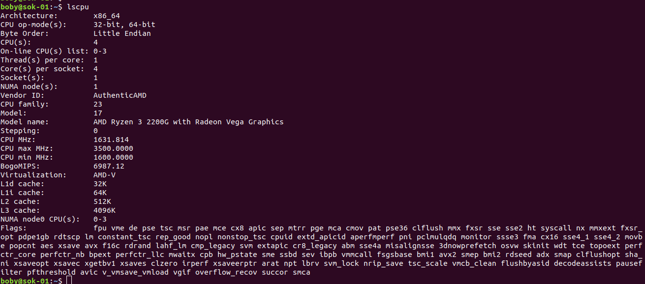 lscpu linux command