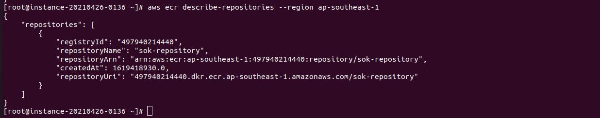 Amazon AWS ECR awscli