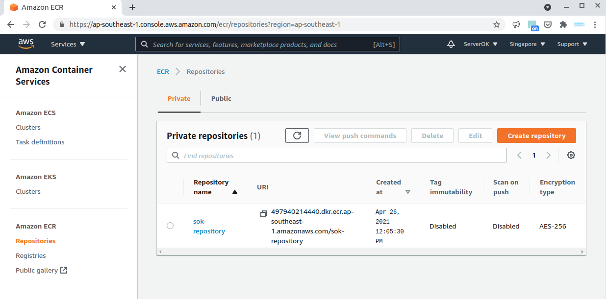 amazon docker registry (ECR)