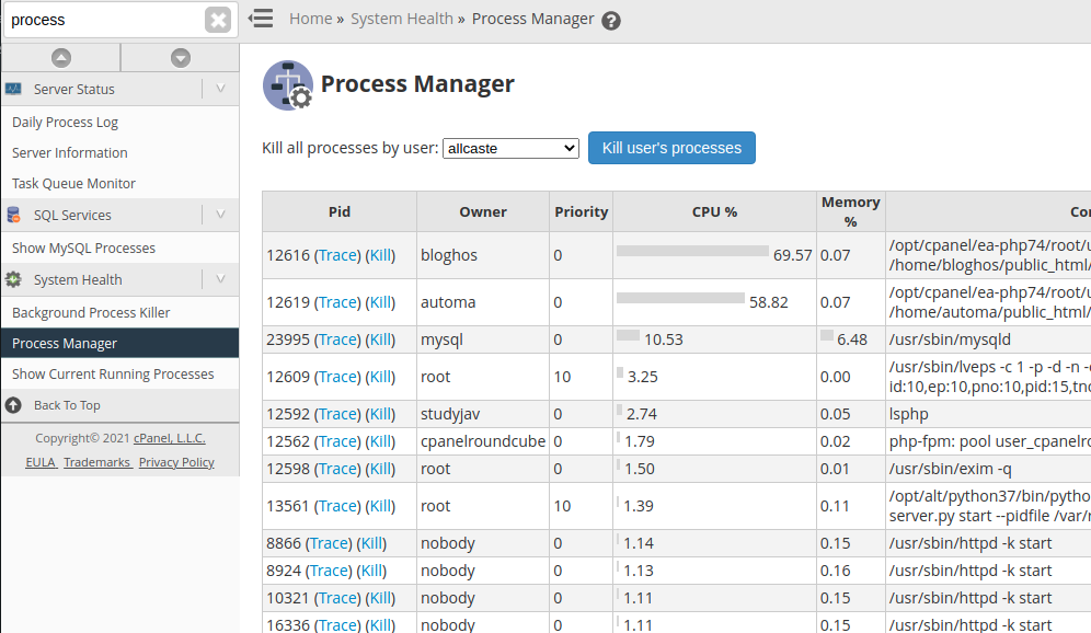 Cpanel Process Manager